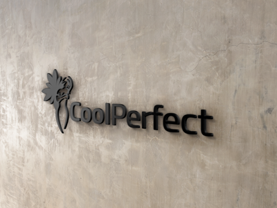 Franchise - CoolPerfect Partner B2B 2